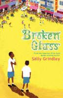 Broken Glass (Paperback)