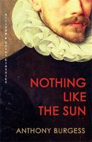 Nothing Like the Sun (Paperback)