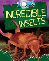 Zoom in On: Incredible Insects - Zoom in on (Paperback)