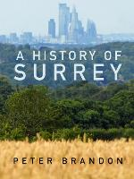 A History of Surrey (Paperback)