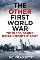 The Other First World War: The Blood-Soaked Russian Fronts 1914-1922 (Hardback)