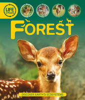 Life Cycles: Forest (Hardback)