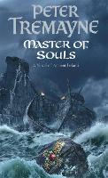 Master Of Souls (Sister Fidelma Mysteries Book 16): A chilling historical mystery of secrecy and danger - Sister Fidelma (Paperback)