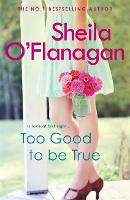 Too Good To Be True: A feel-good read of romance and adventure (Paperback)