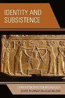 Identity and Subsistence: Gender Strategies for Archaeology - Gender and Archaeology (Paperback)