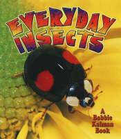 Everyday Insects - World of Insects (Hardback)