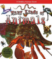 Many Kinds of Animals - What Kind of Animal is It? S.