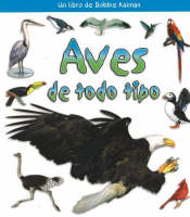 Aves de Todo Tipo (Birds of All Kinds) (Paperback)