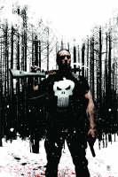 Punisher Max Vol.4 (Hardback)