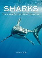 Sharks: The Ocean's Mightiest Predator (Hardback)