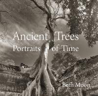 Ancient Trees: Portraits of Time (Hardback)