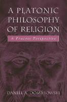 A Platonic Philosophy of Religion: A Process Perspective (Paperback)
