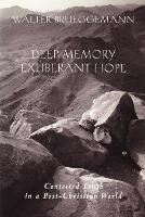Deep Memory, Exuberant Hope: Contested Truth in a Post-Christian World (Paperback)