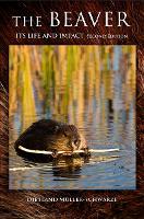 The Beaver: Natural History of a Wetlands Engineer (Hardback)