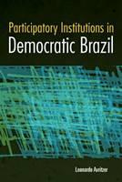 Participatory Institutions in Democratic Brazil (Hardback)