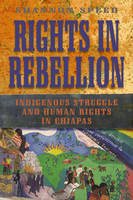 Rights in Rebellion: Indigenous Struggle and Human Rights in Chiapas (Hardback)