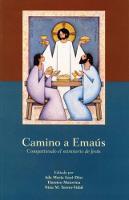 Camino A Emaus: Compartiendo el ministerio de Jesus (Paperback)