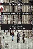 Business as Usual: The Roots of the Global Financial Meltdown - Possible Futures (Paperback)