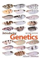 Introducing Genetics: From Mendel to Molecules (Paperback)