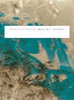 Meteoric Flowers (Paperback)