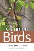 Common Birds of Greater Atlanta (Paperback)