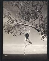 Patrick Demarchelier: Photographs (Hardback)