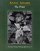 New Photo Series 3: Print - New Photo (Paperback)