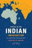 Africa in the Indian Imagination: Race and the Politics of Postcolonial Citation (Paperback)