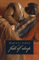 The Fall of Sleep (Paperback)