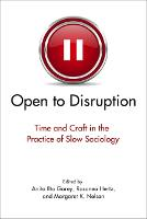 Open to Disruption: Time and Craft in the Practice of Slow Sociology (Paperback)