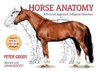 Horse Anatomy 2e