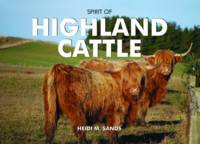 Spirit of Highland Cattle - Spirit of Britain (Hardback)