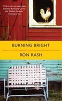 Burning Bright (Hardback)