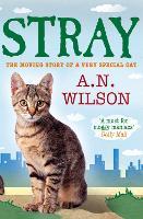 Stray - Animal Antics (Paperback)