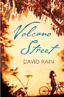Volcano Street (Paperback)