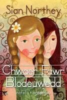 Chwaer Fawr Blodeuwedd (Paperback)