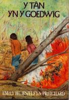 Cyfres Stori a Chwedl: Tan yn y Goedwig, Y (Paperback)