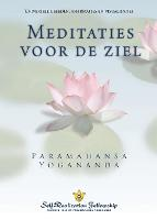 Metaphysical Meditations (Dutch) (Paperback)