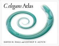 C. Elegans Atlas (Spiral bound)