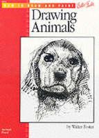 Drawing: Animals (Paperback)