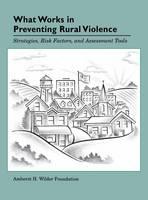 What Works in Preventing Rural Violence (Hardback)