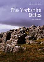 The Lakes - Pocket Mountains S. (Paperback)