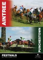 The Aintree and Punchestown Festivals Betting Guide 2009 (Paperback)
