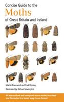 Concise Guide to the Moths of Great Britain and Ireland (Paperback)