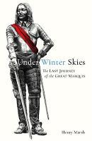 Under Winter Skies
