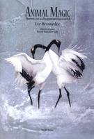 Animal Magic: Poems on a Disappearing World (Paperback)