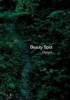 Beauty Spot (diptych) (Paperback)
