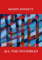All the Invisibles (Paperback)
