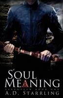 Soul Meaning - Seventeen 1 (Paperback)