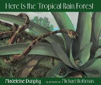 Here Is the Tropical Rain Forest (Hardback)